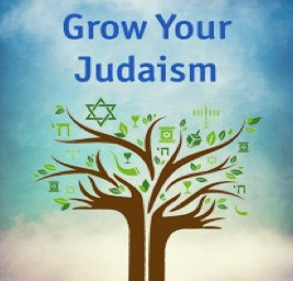 grow your judaism